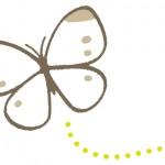 蝶と蛾の違いは?幼虫の見分け方や種類はどれくらいあるの?