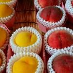 白桃と黄桃の栄養や旬な時期の違い!代表的な品種は?