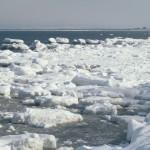 氷山と流氷の違いは大きさや質?気象庁では流氷は氷山に含まれる?
