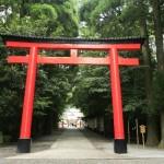 寺と神社の違い!起源や神様、建物や参拝方法の違いを比較