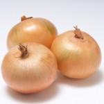 玉ねぎと新玉ねぎの違いは?収穫時期や栄養、種類でも違いがある!?